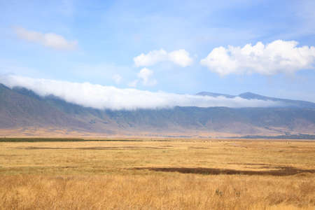 Ngorongoro crater beautiful landscape, Tanzania, Africa. Ngorongoro Conservation Area panorama