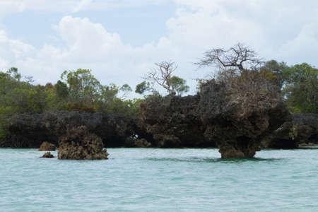 Menai bay landscape, Tanzania, Africa panorama. Indian ocean scenery