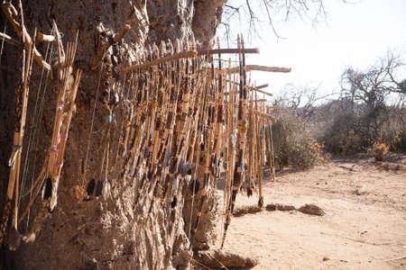 Handmade bows and arrows by Hazda population, Tanzania, Africa. Lake Eyasi area Фото со стока