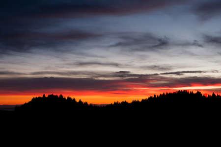 Dramatic red sky on dark woodland. Darkness landscape Stockfoto