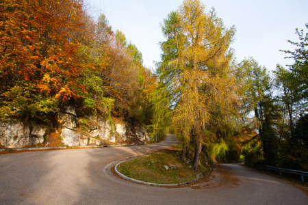 Hairpin bend with autumn landscape, tarmac road . Colorful trees