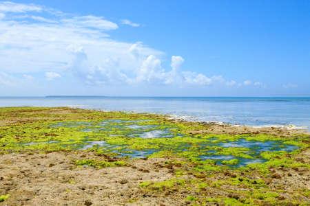 Zanzibar beach landscape, Tanzania, Africa panorama. Indian ocean scenery Stockfoto