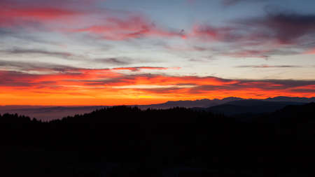 Dramatic red sky on dark woodland. Darkness landscape Archivio Fotografico