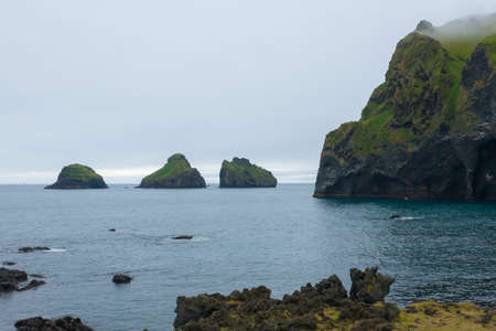 Elephant shape rock, Vestmannaeyjar island beach, Iceland. Vestmann Islands Archivio Fotografico