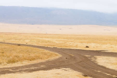 Dirt road on Ngorongoro crater, Tanzania landscape. Ngorongoro Conservation Area, Africa Banque d'images
