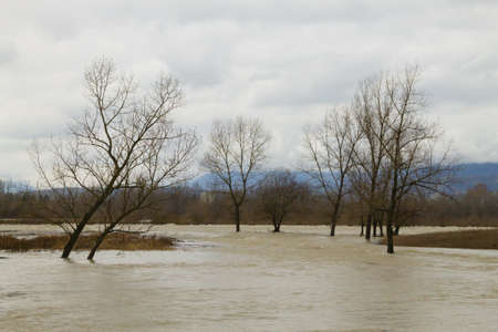 Brenta river flood. Italian rural landscape. Water and trees