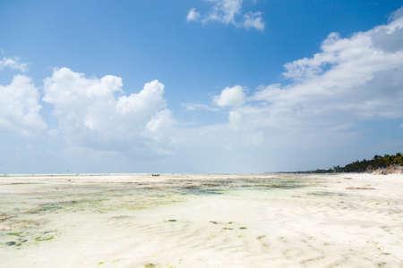 Zanzibar white sand beach landscape, Tanzania, Africa panorama. Indian ocean scenery