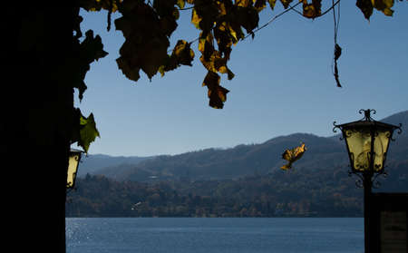 Autumnal foliage with a falling leaf in the background of Orta Lake
