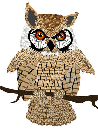 Graphic owl drawing, isolated object over white background photo