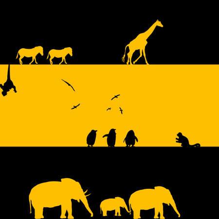 elefante cartoon: Animales Ilustraci�n africano en negro y amarillo Foto de archivo