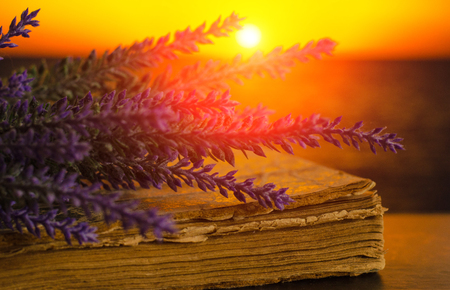Bouquet of lavender lies on the old book on sunset background