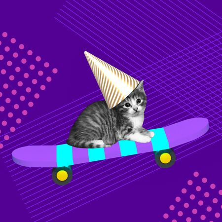 Funny cat in a birthday cap on a skateboard enjoys holiday contemporary art collage on purple background Reklamní fotografie
