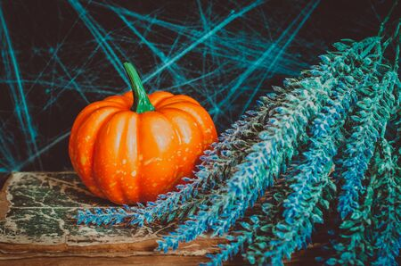 Pumpkin and bunch of lavender on old book and spiderweb background. Autumnal mood composition