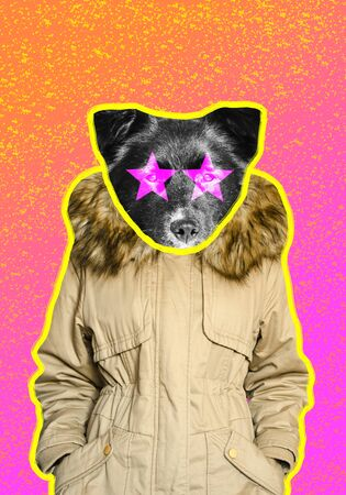 Funny black dog in a parka jacket on duotone gradient background contemporary art collage