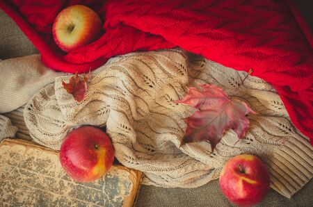 Autumnal composition with apples, book and warm knitted blanket top view with copy space. Concept of reading mood