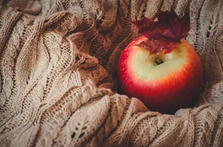 Close-up apple and small red maple leaf on knitted sweater background with copy space Reklamní fotografie