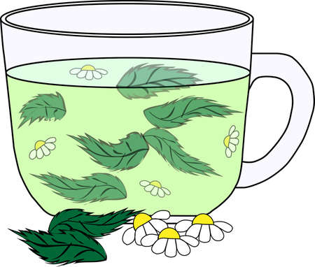 camomile tea: Green tea with a mint and camomile in a cup on a white background Illustration