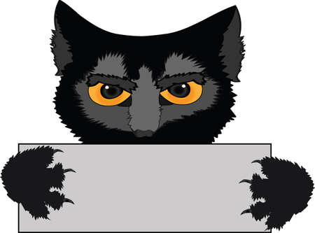 segurar: Um gato preto prende um cartaz nas patas isoladas em um fundo branco