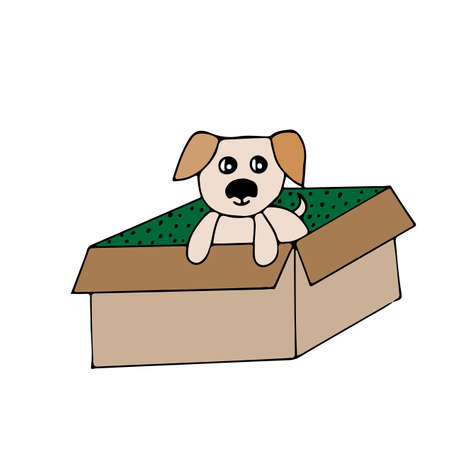 Cute little dog sits in the opened box. illustration for greeting card, poster, or print on clothes. Illustration