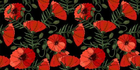 Fleurs de pavot floral fond transparent isolé sur le noir. Oeuvre vectorielle. Conception botanique avec des coquelicots rouges.