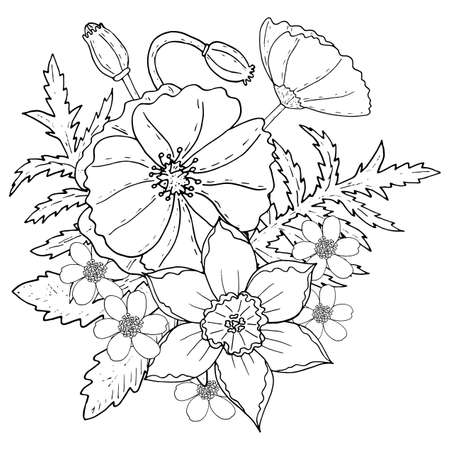 Floral Template With Poppy And Narcissus Printable Coloring