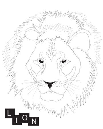 Lion isolated on the white background. Line lion animal.
