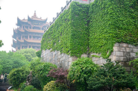 Wall covered with green plants near the Yellow Crane Tower, the traditional Chinese multi-storey tower located on Sheshan (Snake Hill).