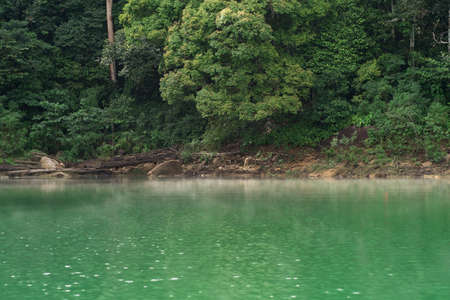 Kenyir lake water with tropical forest trees. Beautiful tranquill idylic view.