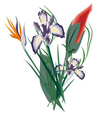 florish: flowers puget, isolated