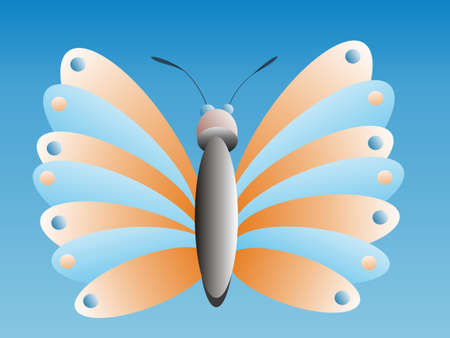 lepidopteran: background with colors butterfly, orange, blue,