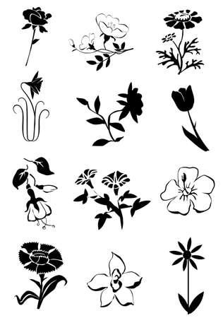 bloemen iconen Stockfoto
