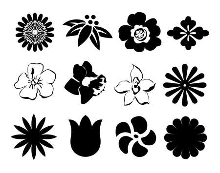 set bloemen knoppen zwart en wit