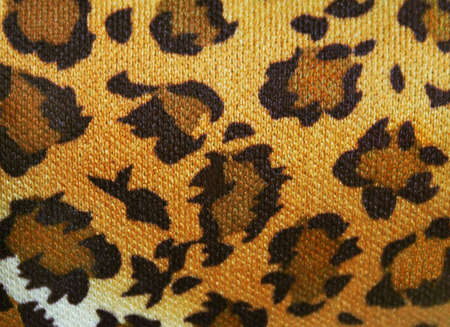 Animal fur texture background, photo collage with textured Stock Photo - 4689281