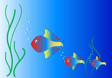 neon fish: Aquarium and neon fish, background