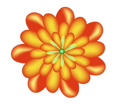 Flower Stock Photo - 5166789