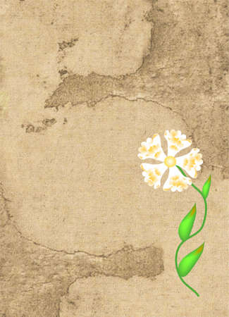 Retro parchment with colors flower Stock Photo - 5166795