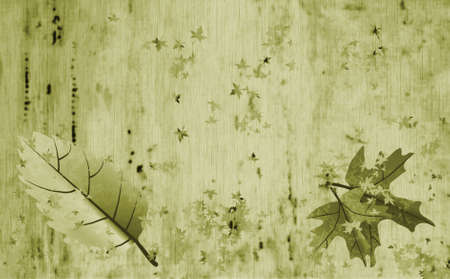 Retro green parchment with autumn leaf designs, year periods photo