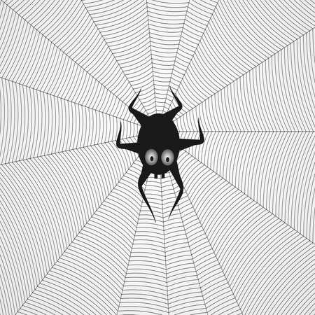 spider in the web, the background for good luck photo
