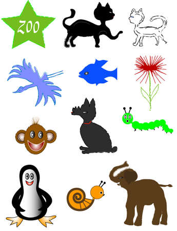 Colors Animal symbols, vector