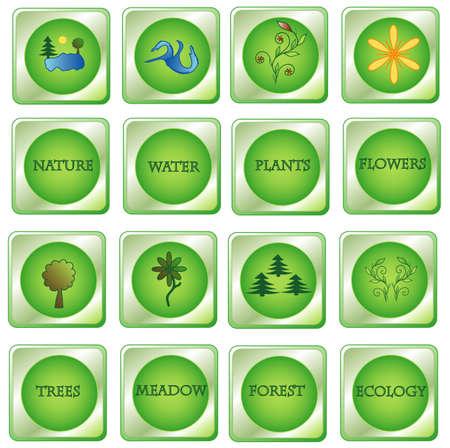 Set natural green buttons  Stock Vector - 7784673