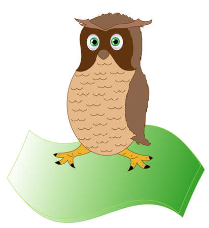The owl, the bird of wisdom on parchment  Vector