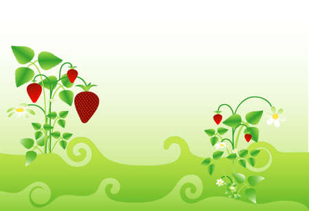 Background with strawberry motif, place for text