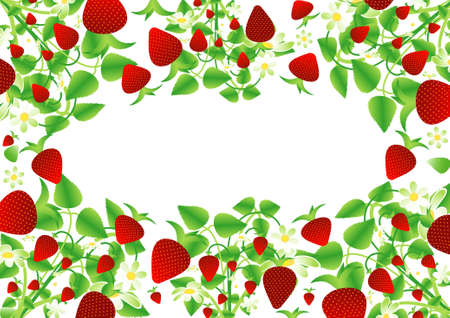 Background, Strawberry frame Ilustracja