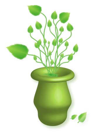 Herbs in vase Vector