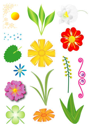 flowered: Set of flowers and plants, objects isolated, vector
