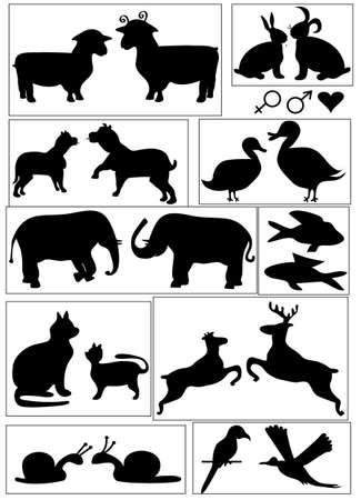duo: Animal symbols, vector format Illustration