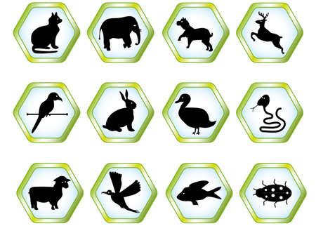 Set animals, vector Vector