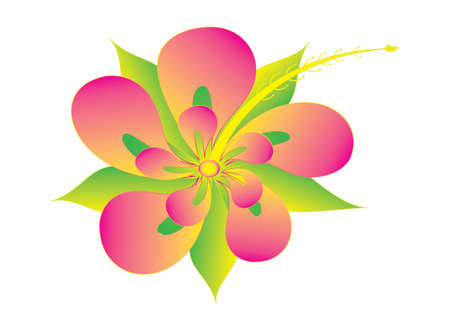 stigma: Hibiscus flower, vector