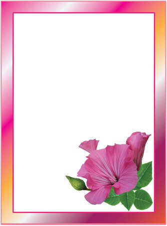 vibrant: Floral frame with vibrant hibiscus flowers roses Stock Photo