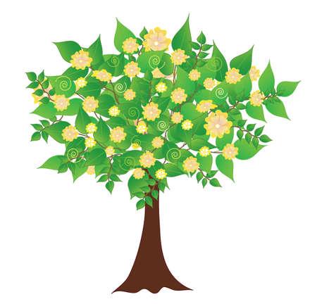 flowering: Spring flowering tree, vector